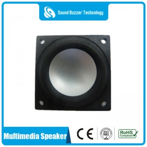 New Delivery for Loudspeaker -
