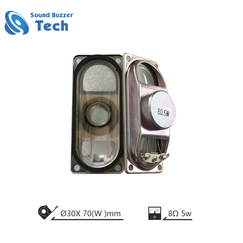 Mini Loudspeaer driver 30*70mm 8ohm 5w speaker Featured Image
