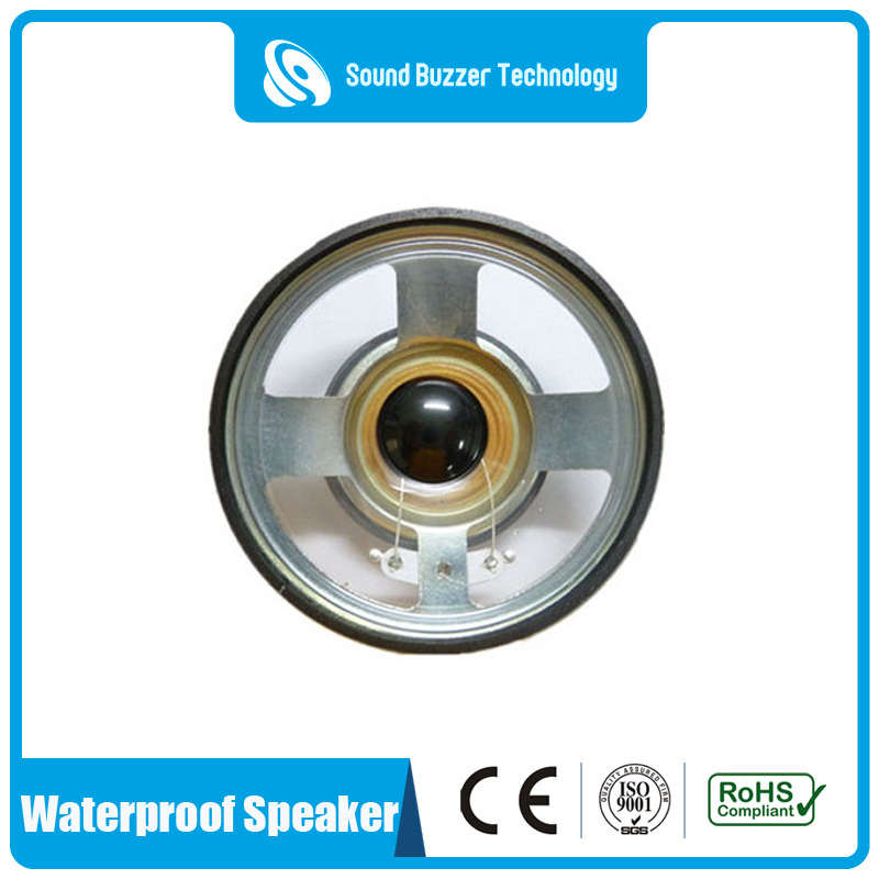 OEM/ODM Supplier Ceiling Speaker -