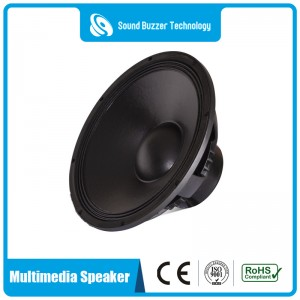 Free sample 5″ Big Power sound speaker for multimedia