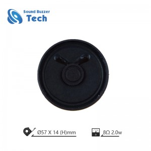 ROHS Compliant 50mm 8 ohms 2w Small Speakers